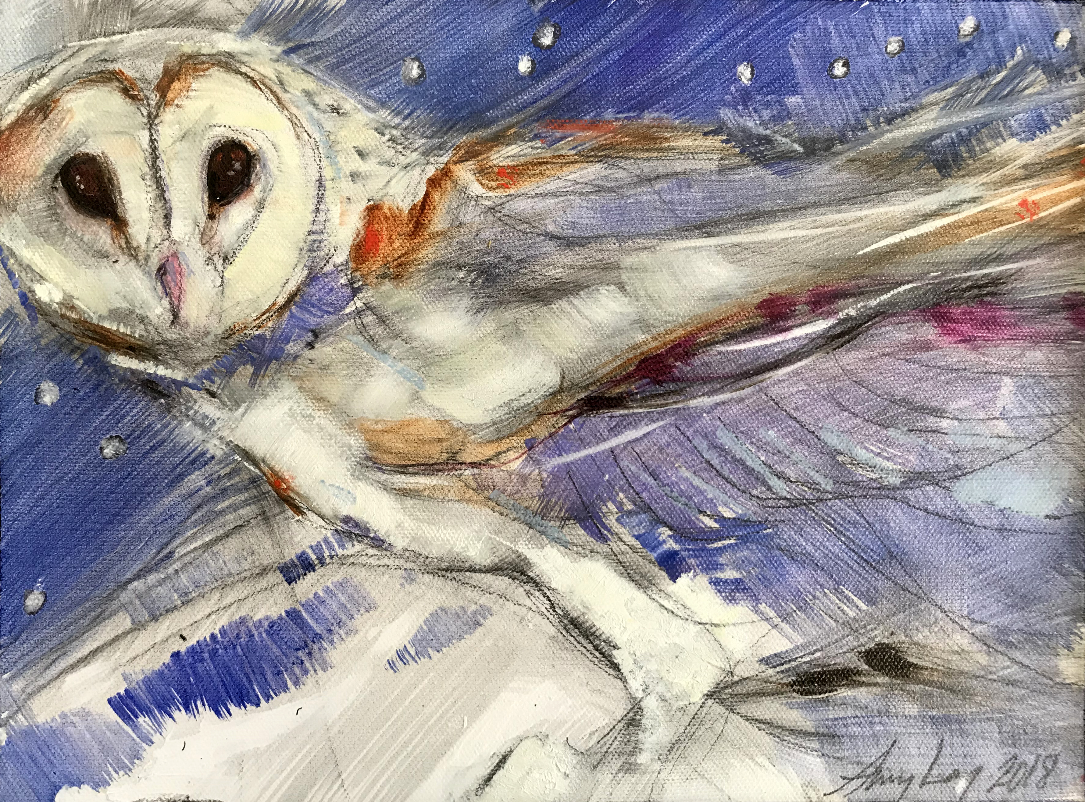 SWIFT OWL