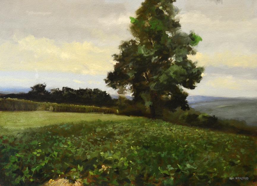 LEONARD'S FARM